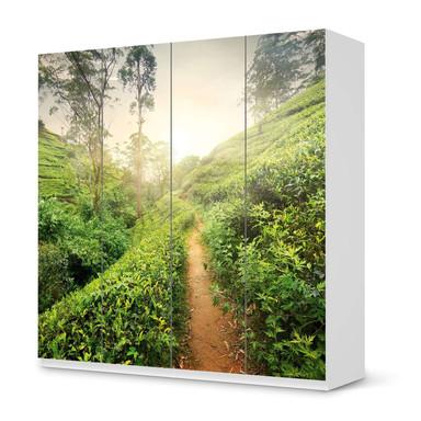 Klebefolie IKEA Pax Schrank 201cm Höhe - 4 Türen - Green Tea Fields- Bild 1