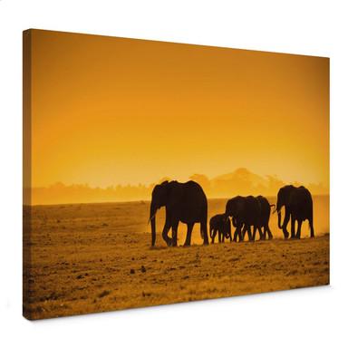 Leinwandbild Elefantensilhouetten