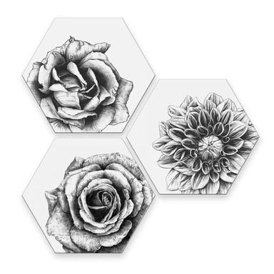 Hexagon - Alu-Dibond Kools - Flowery 3er Set