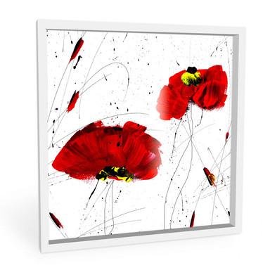 Wandbild Niksic - Roter Mohn