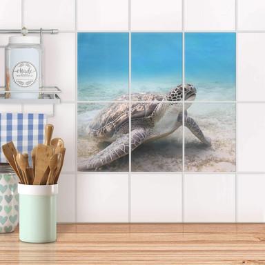 Fliesenaufkleber hoch - Green Sea Turtle