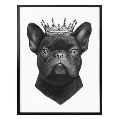 Poster Korenkova - King French Bulldog