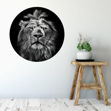 Wandtattoo Lion - Rund