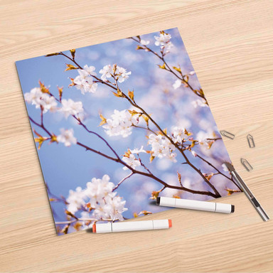 Folienbogen (30x30cm) - Apple Blossoms