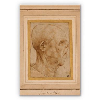 Hartschaumbild Da Vinci - Karrikatur eines Männerkopfes