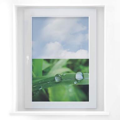 Fensterbild Natur 4