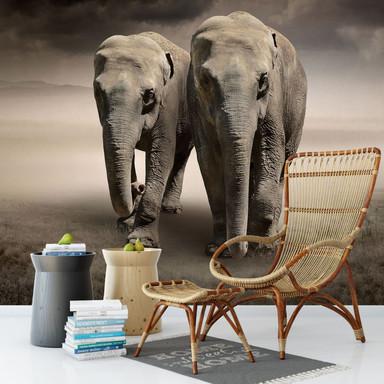 Fototapete Die Elefanten - 336x260cm - Bild 1