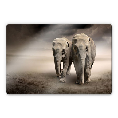 Glasbild Die Elefanten