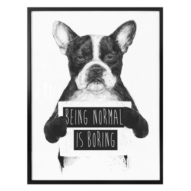 Poster Solti - Being normal is boring