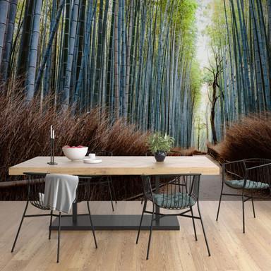 Fototapete Colombo - Die Bambushöhle in Japan