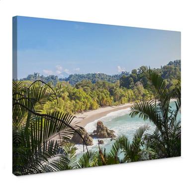 Leinwandbild Colombo - Dschungelblick in Costa Rica