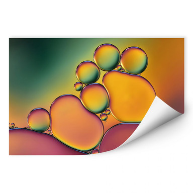 Wallprint Westum - Bubbles