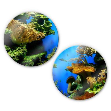 Glasbild Korallenriff Set (2-teilig) - rund