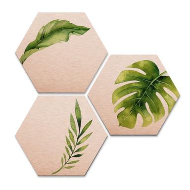Hexagon - Alu-Dibond-Kupfereffekt - Kvilis - Dschungel 04 (3er Set)