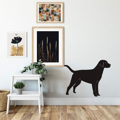 Wandtattoo Labrador