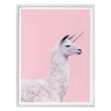 Poster Fuentes - Einhorn-Lama
