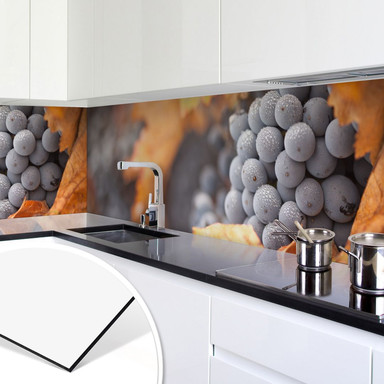 Küchenrückwand - Alu-Dibond - Wein im Herbst