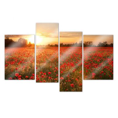 Acrylglasbild Mohnfeld im Sonnenuntergang (4-teilig)