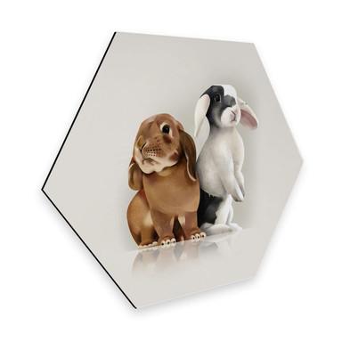 Hexagon - Alu-Dibond Braun - Bunny Love