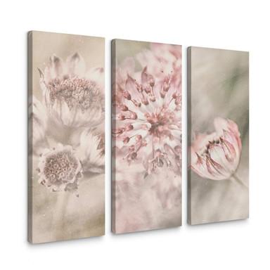 Leinwandbild Davidsson - Wiesenblüte - 3x 30x80cm - Bild 1