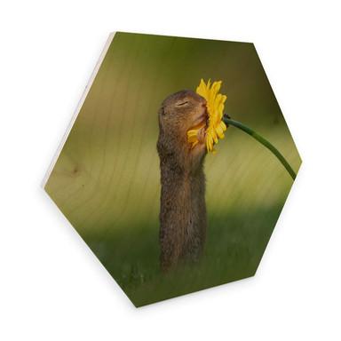 Hexagon - Holz Birke-Furnier van Duijn - Erdhörnchen riecht an Blume