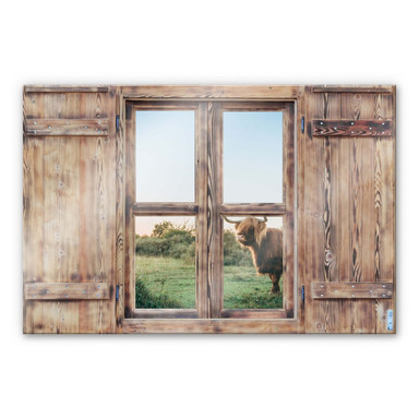 Glasbild 3D Holzfenster - Highland Cow 01