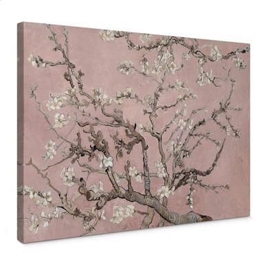 Leinwandbild van Gogh - Mandelblüte Rosé