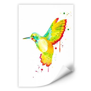 Wallprint Buttafly - Kolibri