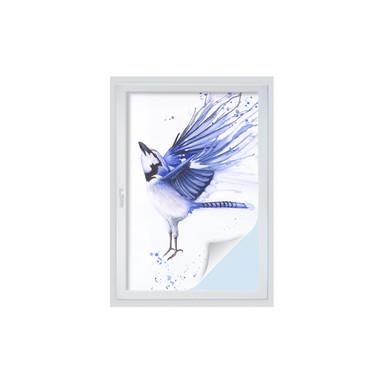 Fensterfolie Müller - Blaumeise