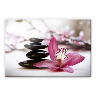Acrylglasbild Orchidee
