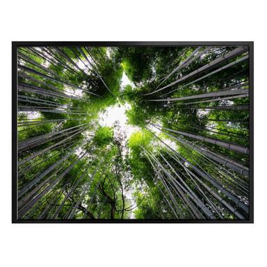 Poster Hugonnard - Wald in Japan