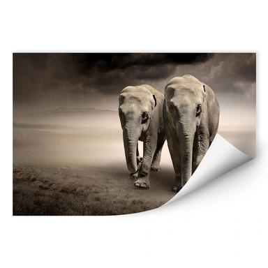 Wallprint Die Elefanten