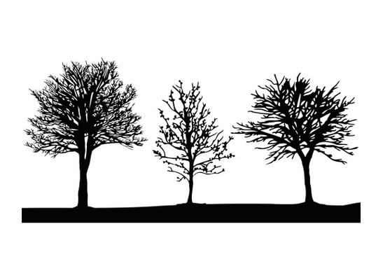 Glasdekor Baumgruppe - Bild 6