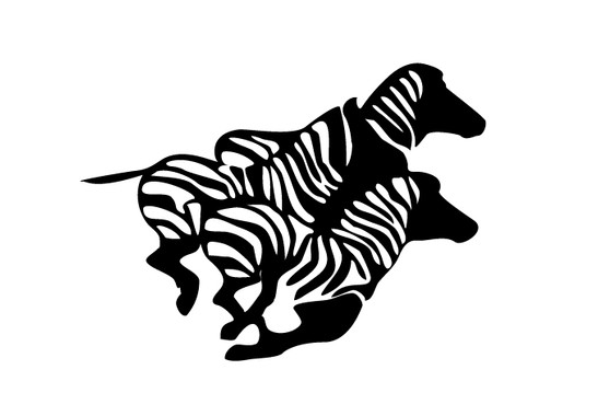 schwarz/weiss Ansicht - Wandtattoo Rennende Zebras