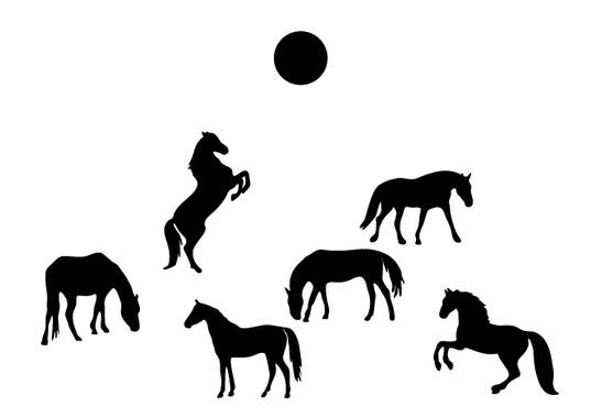 schwarz/weiss Ansicht - Wandtattoo Pferde unter Sonne