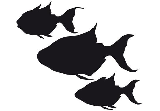 Glasdekor Drei Fische - Bild 6