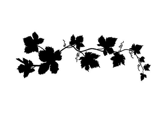 schwarz/weiss Ansicht - Wandtattoo Ranke