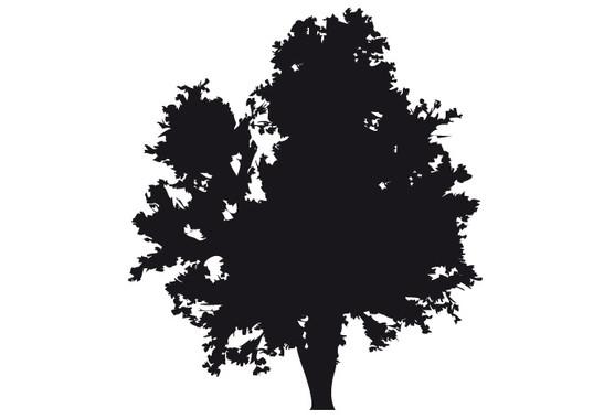 schwarz/weiss Ansicht - Wandtattoo Baum