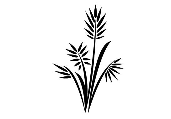 schwarz/weiss Ansicht - Wandtattoo Palmenzweig