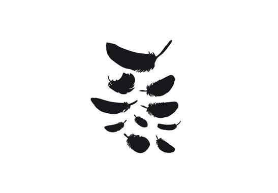 schwarz/weiss Ansicht - Wandtattoo Federn