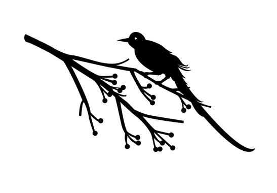 schwarz/weiss Ansicht - Wandtattoo Vogel auf Ast
