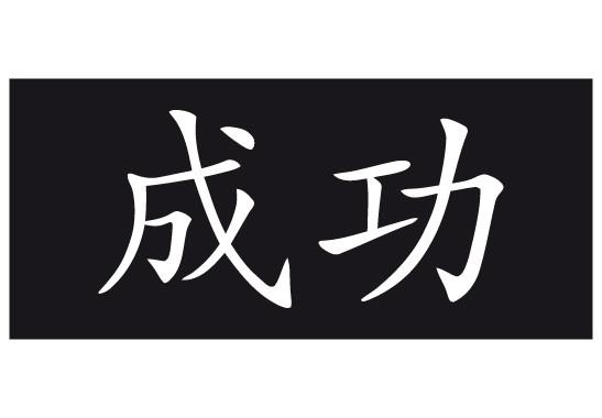 Sichtschutz Chinesisch für Erfolg - Bild 6