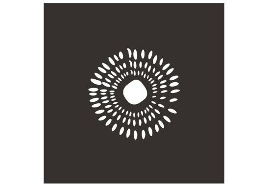 Sichtschutz Kiwikerne - Bild 6