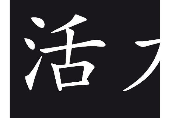 Ein Detail des Motives - Sichtschutz Chinesisch für Lebensweisheit