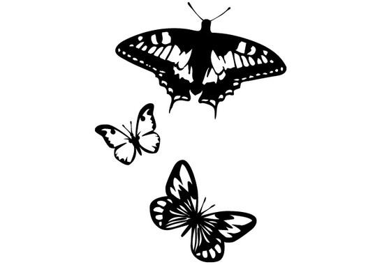 schwarz/weiss Ansicht - Wandtattoo Butterflies