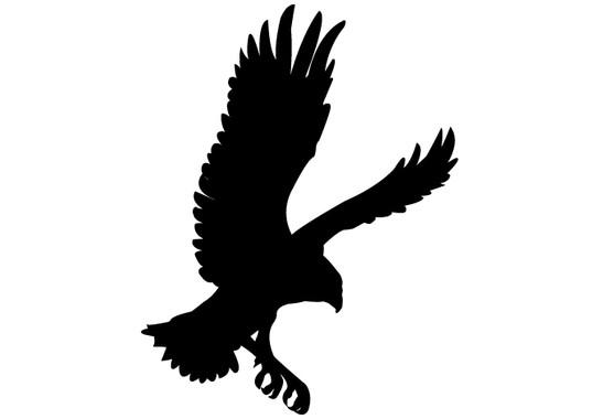 schwarz/weiss Ansicht - Wandtattoo Adler