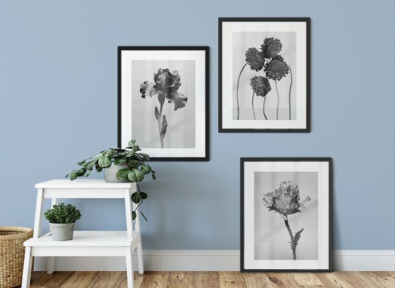 Poster Kadam - Blumen Trio mit Bilderrahmen (3er Set)