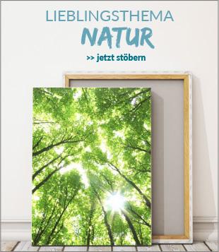 Leinwandbilder rund um's Thema Natur